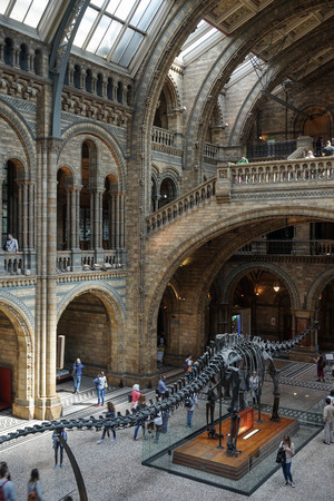 People exploring  the National History Museum in London