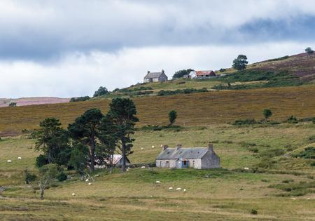farmhouses: Farmhouses near Lochindorb