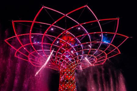 expo: Tree of Life at Expo in Milan Italy
