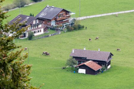 chalets: Swiss chalets near Brienz in the Bernese Oberland region of Switzerland