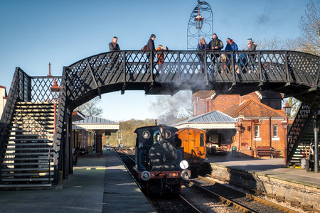 bluebell: Bluebell Steam Train at Sheffield Park Station Editorial