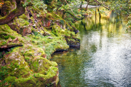 range of motion: View along the Glaslyn River in autumn