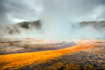 prismatic: Grand Prismatic Spring in Yellowstone