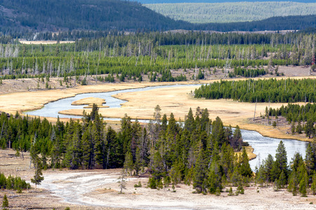 meandering: The Meandering Firehole River