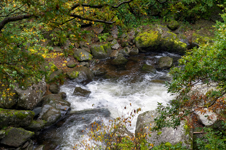 lynmouth: View of the East Lyn River