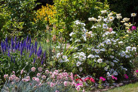 grinstead: An East Grinstead Garden in Full Bloom