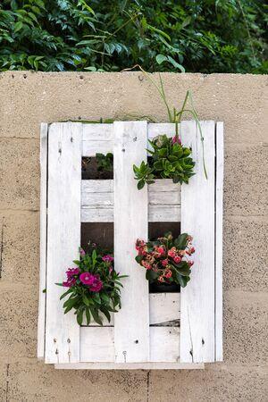 flower box: Flower Box on a Wall in Marbella Spain