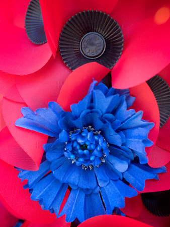 commemorate: Special Poppy to Commemorate the Centenary of the Battle of the Somme Stock Photo