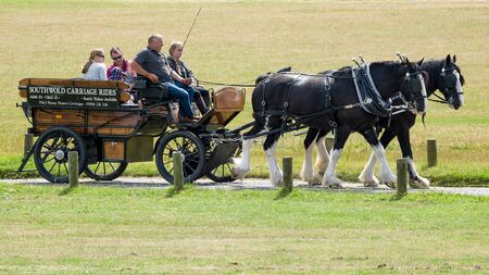 shire horse: People Enjoying a Horse and Carriage Ride through Southwold