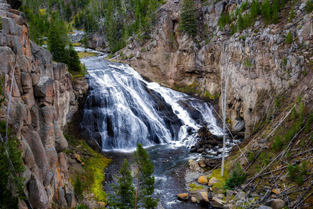 Gibbon Falls in Yellowstone National Park
