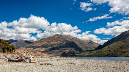 Driftwood on the Shore of Lake Wanaka Stock Photo