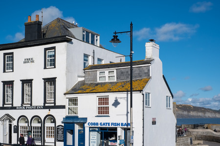 Pub and Fish and Chip Shop in Lyme Regis Editorial