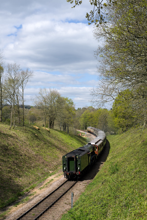 Flying Scotsman on the Bluebell Line