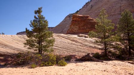 Strange Rock Formation and Checkerboard Mesa in Zion Stock Photo
