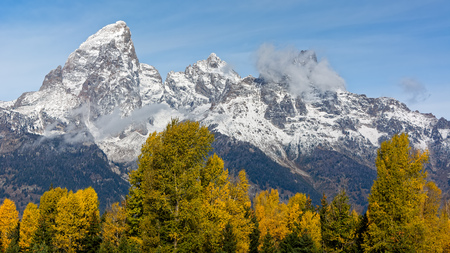 Autumn Colours in the Grand Teton National Park