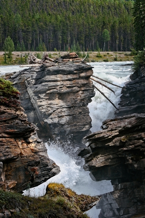Rapids on the Athabasca River in Jasper National Park