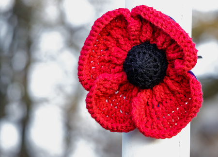 Special knitted poppy to Commemorate the ending of the First World War