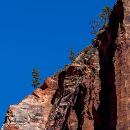 Red mountain in Zion National Park in Utah