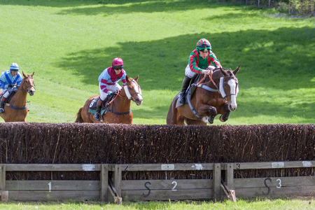 GODSTONE, SURREYUK - MAY 2 : Point to point racing at Godstone Surrey on May 2, 2009. Three unidentified people Editorial