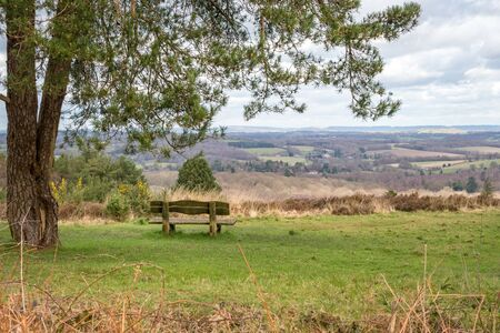 View of the Ashdown Forest in Sussex