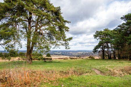 View of the Ashdown Forest in Sussex Archivio Fotografico