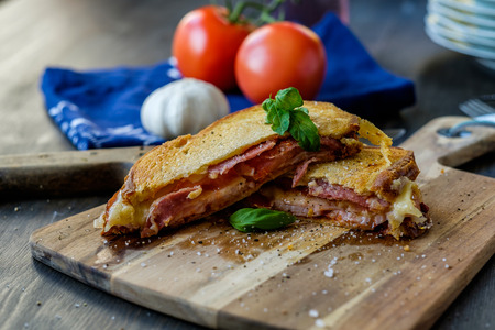 Grilled sandwich with some basil and tomatoes in the background photo
