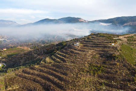 Hillside terraces and fog cloud in a mountain hollow