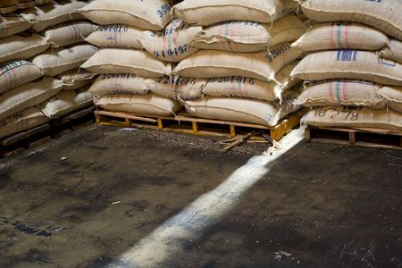 sacks of raw coffee beans in a warehouse