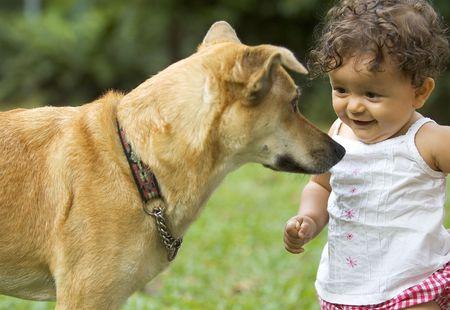 mujer perro: Infantil y perro de la familia, mirando el uno al otro