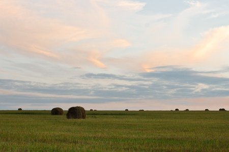 early summer sunset on the sloping field with haystacks Stock Photo