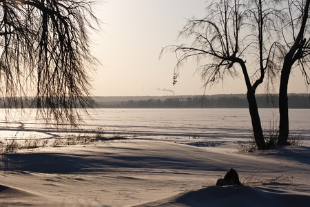 winter landscape with trees on the shore of a frozen pond photo