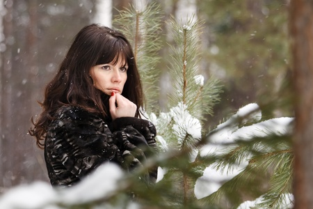 portrait of a young girl on a background of a winter forest photo