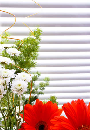 bouquet of tulips, gerberas, greenery, wild flowers, on a striped background Stock Photo - 12746196