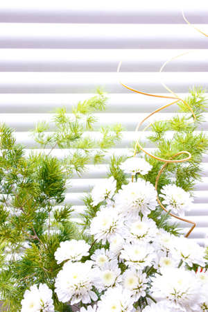 a bouquet of herbs and wild flowers on a striped background