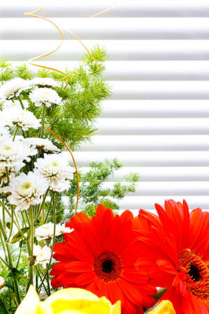 bouquet of tulips, gerberas, greenery, wild flowers, on a striped background Stock Photo - 12746197