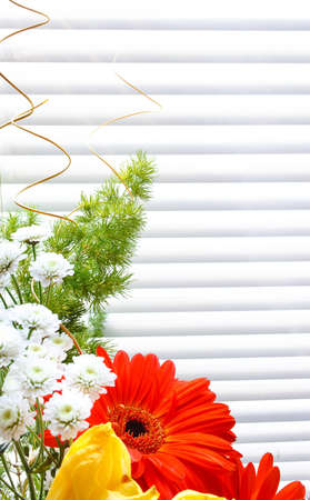 bouquet of tulips, gerberas, greenery, wild flowers, on a striped background Stock Photo - 12746193