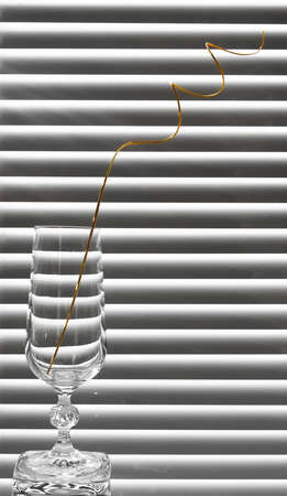 glass with spiral branches on the black and white background