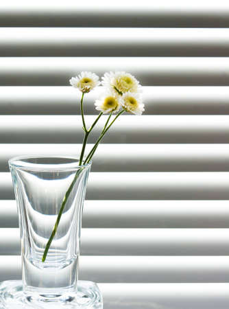 a glass with a sprig of wild flowers on the black and white background Stock Photo