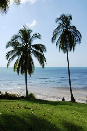 Two Palm Trees Shading a Man on the Beach Banco de Imagens