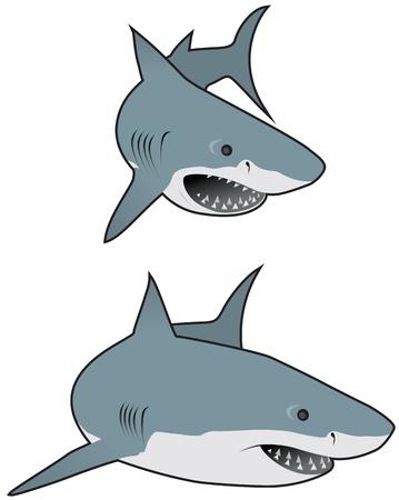 sea monster: Great white sharks
