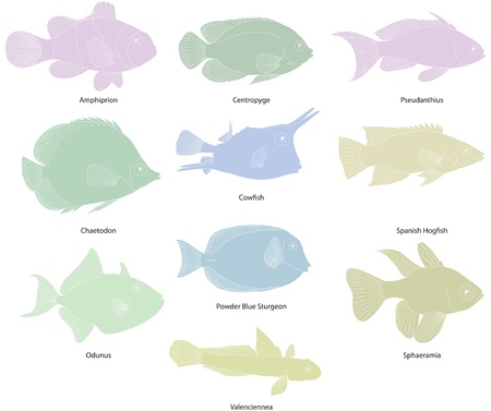 Tropical fish line drawings Vector