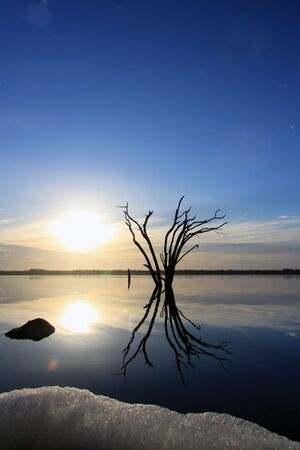 The destruction of freshwater lakes by salt encroachment at Lake Norring Stock Photo