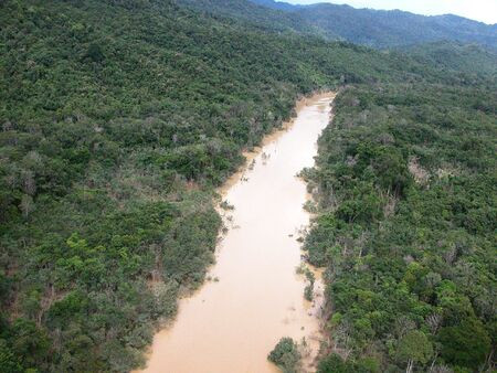 depletion: Tropical rainforests in Borneo Stock Photo
