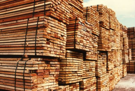 softwood: Sawntimber waiting for export