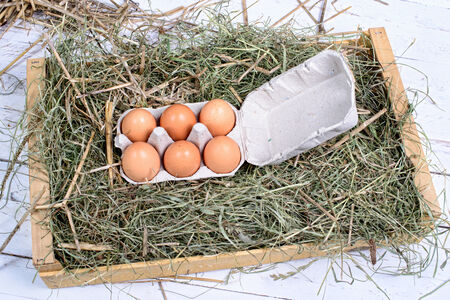 carton of six eggs in the straw photo