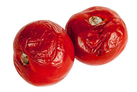 uneatable: rotten tomatoes on the white background Stock Photo