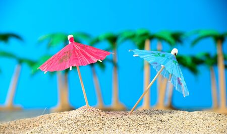 arbre: Two small umbrellas on a beach with palm trees