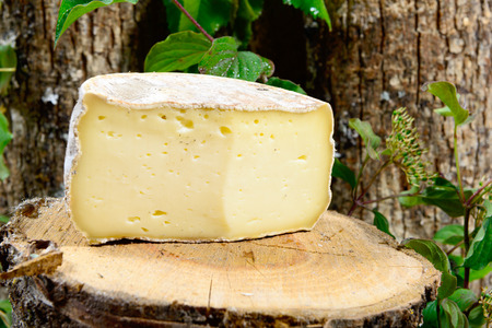 french cheeses Savoie on a piece of wood Foto de archivo
