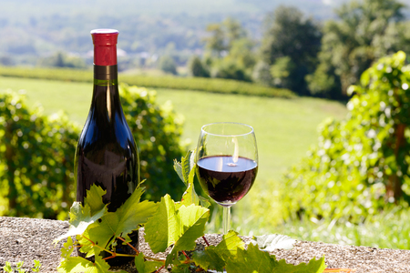 glass of wine: a bottle and a glass of red wine,  on vineyard  background Stock Photo