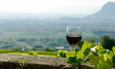 copa de vino: Copa de vino tinto expuesta al sol